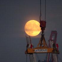 Riesiger Mond einen Tag vor dem Maximum - Foto: Gesine Schwerdtfeger
