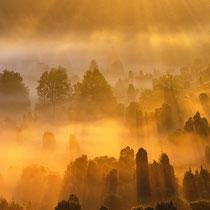 17 Nebelmoirgen im Totengrund - Foto: Rüdiger Nebelsieck