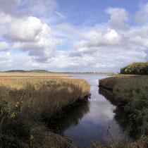 "Naturschutzgebiet ,,Geltinger Birk"" - Foto: Gerd Jürgen Hanebeck"