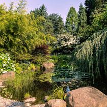 Botanischer Garten - Foto: Monika Stock