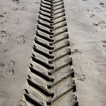 3. Platz   Spuren im Sand (159 Pkt.)   -   Foto:   Hans Dieckmeyer