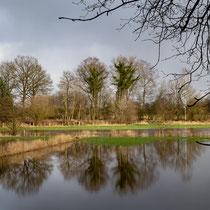 Hochwasser, Schmalfelder Au - Foto: Britta Hamann