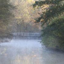 Herbstmorgen - Foto: Uta Svensson
