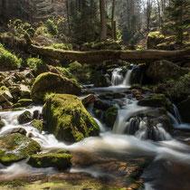 Ilsetal, Harz - Foto: Gesche Andresen