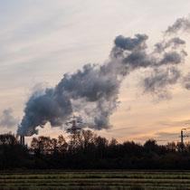 Blick auf das Kraftwerk Moorburg - Foto: Anja Lewertoff