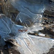 Eispfütze - Foto: Hans Dieckmeyer