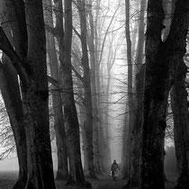 15 Elbpark - Foto: Marion Breese