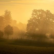 14 Herbstmorgen - Foto: Holger Tobuschat