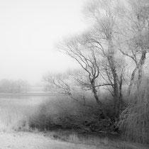 10 Wintermorgen - Foto: Holger Tobuschat