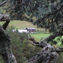 In den Bergen von Norwegen - Foto: Carsten Neubauer