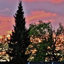 Sonnenuntergang - Foto: Lothar Boje