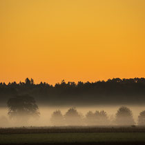 Herbstmorgen im Lindhorster Moor - Foto: Holger Tobuschat