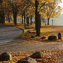 Außenmühle im Herbst - Foto: Hans Dieckmeyer