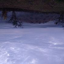 Lake Mburo im Morgengrauen - Foto: Gesine Schwerdtfeger