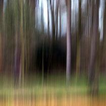 Wie gemalt, aber doch fotografiert ... und ohne Photoshop   -   Foto: Willi Heinsohn