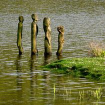 Holzmenschen in der alten Süderelbe   -   Foto Gesine Schwerdtfeger