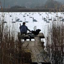 Pause am See der Schwäne - Foto: Gesine Schwerdtfeger