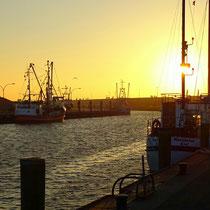 Fischereihafen Büsum   -   Foto:   Carsten Neubauer