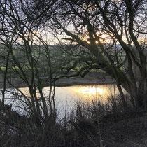 Sun shining on the River