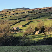 Carver from the Dales Way in the winter sun