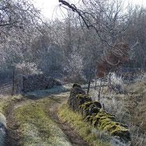 Chemin creux à proximité du gîte