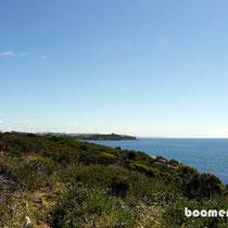 Küste vor Devonport