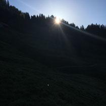 Sonnenaufgang nach der Stallarbeit