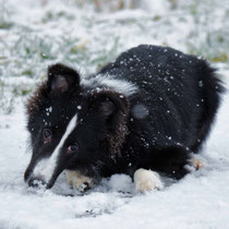 Schnee? Coole Sache! (03.12.2017)