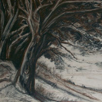 Bäume - Kreidezeichnung - 2009