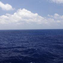 21 dagen op zee