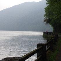 langs de oever van de Donau
