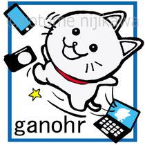 2016 ガノー様サイトのアイコン作成 http://ganohr.net