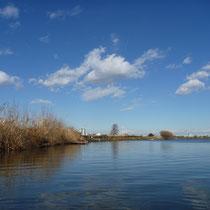 川の中からの風景