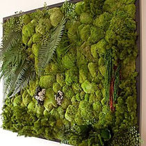Greenwall Kit. Quelle: archiexpo.com