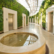Living green walls at Longwood Gardens. Quelle: http://foliageconcepts.wordpress.com/