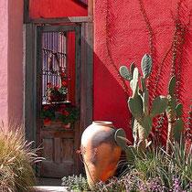 Grünpflanzen und -töne heben das Rot durch den Kontrast besonders schön hervor. Bildquelle: hanselmannphotography.com