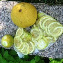 レモンの輪切りの砂糖漬け冷凍