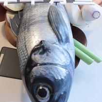 Bemalung Fisch-Dummy