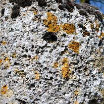 Ancienne croix du cimetière- Moyenneville: gros plan sur le tuf