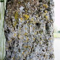 Partie du fût de la croix templière d'Hocquélus