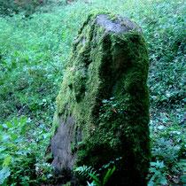 Une des trois pierres d'Haravesnes- 2011