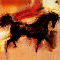 L'ÉTALON NOIR - DIGIGRAPHIE 105 X 86 - 2009