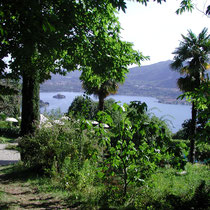 Blick auf den Lago d´Orta