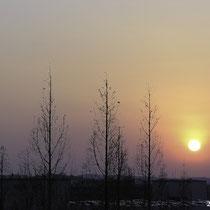 金剛東・冬の日没
