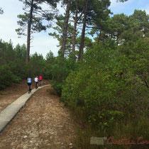 Le vélo est bien pratique en Gironde pour accéder à des sites remarquables. Vers l'étang de Cousseau...