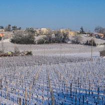 Vignoble et hameau de Mons, commune de Cénac, sous la neige. 25 janvier 2007