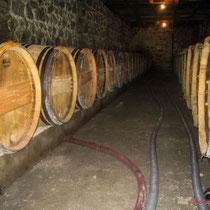 Chai d'élevage. Château Roquebrune, Cénac, 2 octobre 2007