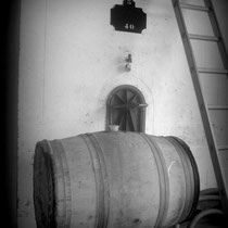 Cuverie béton et barrique de chêne, Château Roquebrune, Cénac