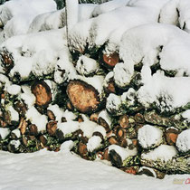 Tas de bois sous la neige. Commune de Cénac, 25 janvier 2007