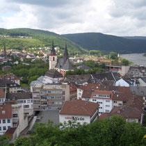 Bingen, Ansicht Weinberge am Fuße des Rochusberg